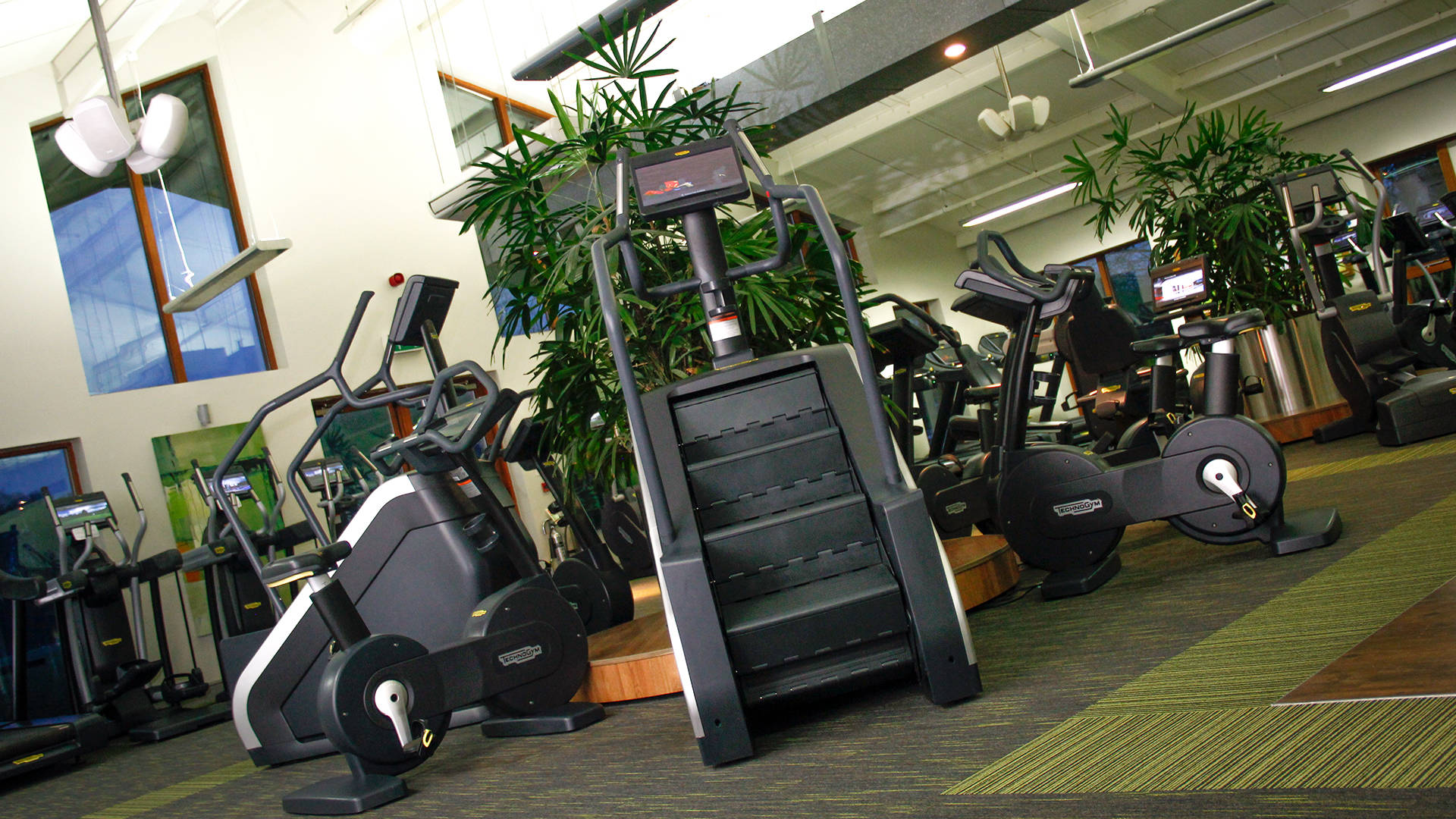 Benton Hall Golf and Country Club's technogym cardiovascular equipment